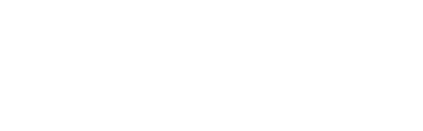 wdt-new-white-1.png